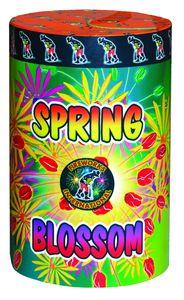SpringBlossom_result